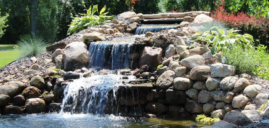 backyard watergarden