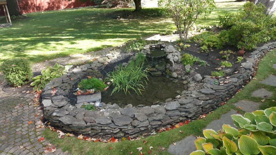 pond net for fall