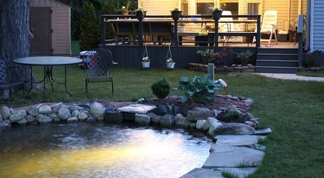 backyard pond at night