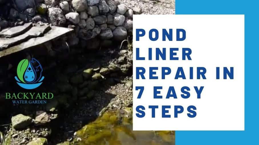 pond liner repair in 7 easy steps