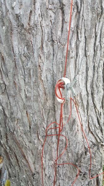 winch for grapevine light hanging cable