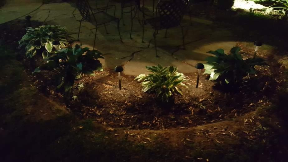 low voltage lighting in garden